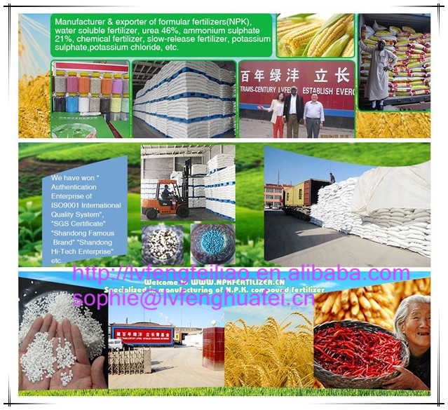 Water Soluble Mono Ammonium Phosphate Fertilizer MAP