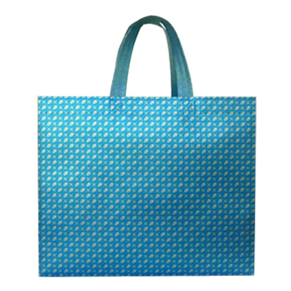 China manufacturer popular lamination non woven shopping bag with great price