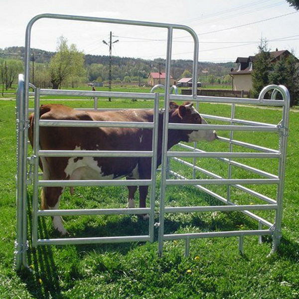 livestock metal fence panels for cattle / sheep / horse