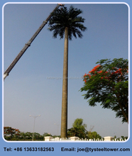 camouflage palm artificial tree monopole telecommunication tower