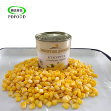 Chinese natural food vacuum canned baby sweet corn