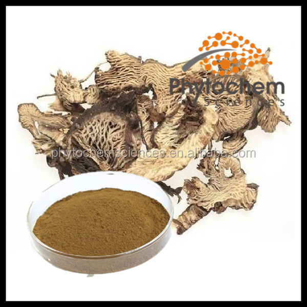 powdered black cohosh extract 2.5~5%Triterpene Tlycosides