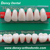 Four Layer dental artificial acrylic teeth | Artificial false teeth