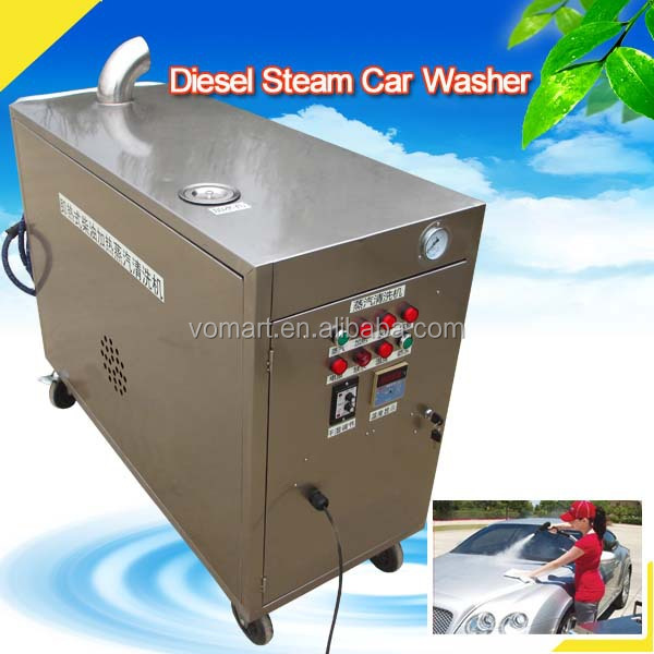 CE no boiler two guns 30 bar diesel mobile steam cleaner/steam car cleaner