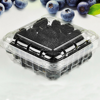 Dongguan Factory 2016 New on Market Clear Plastic Box for Blueberry Packaging