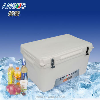 Insulated Plastic Cooler Box for Vaccine,Beer, Food,Fishing,BBQ