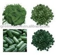 Natural Spirulina Extract