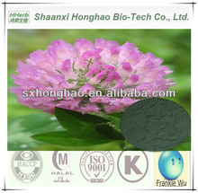 Plant Extract 8%/20%/40% Isoflavones HPLC Red Clover Powder