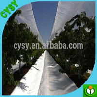 anti uv protection quality plastic rain cover /woven fabric greenhouse cover film/rain cover for strawberry plants