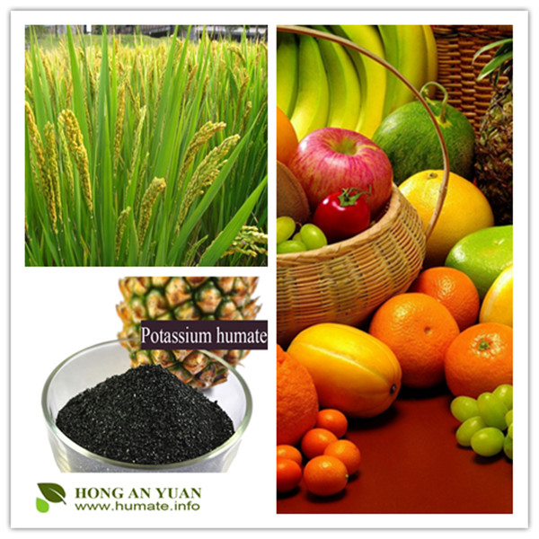 containing 75% Humic and Fulvic acid + 12% Organic Potassium+chelated organic micronutrients