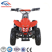 Kids 49cc 2-stroke Mini ATV Quad Bike for Sale Made in China