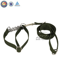 dog chain leashes for rhe large dog
