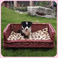 Luxury Handmade Pet Sofa Large Wicker Dog Beds With Legs