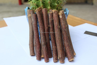 Dried apple tree branches/pet chew snack/rabbit food for small animals