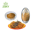 GMP Manufacturer Supply Cordyceps Sinensis Extract