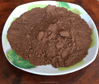 Natural cocoa powder high quality competitive price