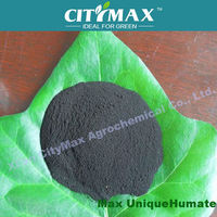 Humic Fulvic Acid flake with high water soluble fertilizer for onion
