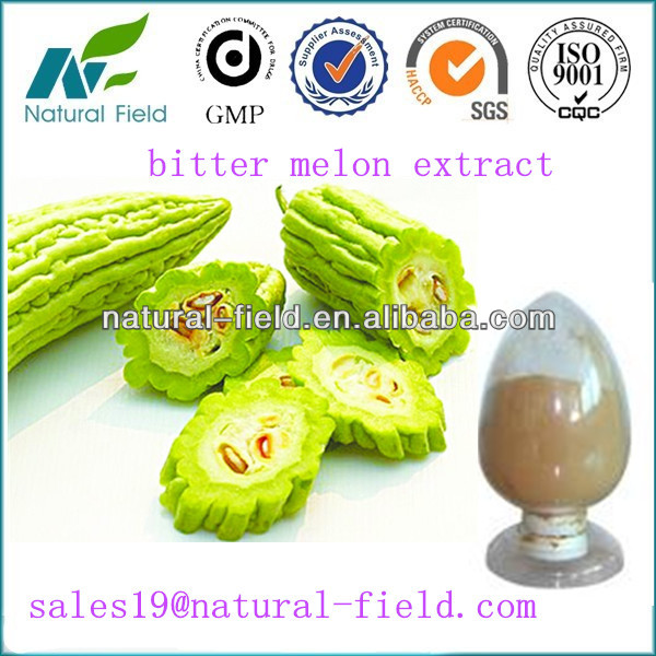 competitive price/ISO/HACCP bitter melon