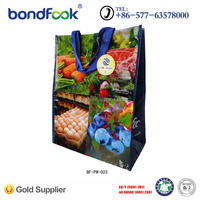 Our factory specializes in color print pp non woven bag