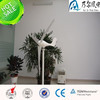 200w wind mill generator small windmill