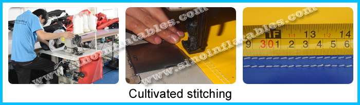 cultivated stitching 1.jpg