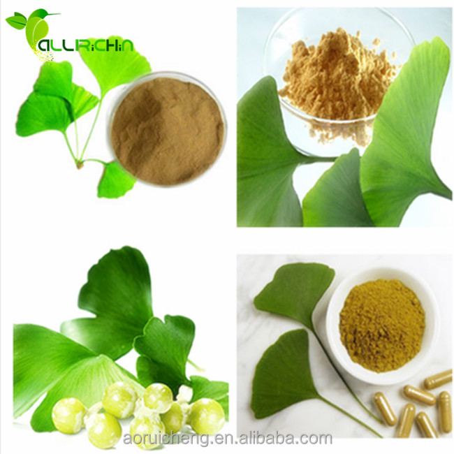 ginkgo biloba leaves, dried ginkgo biloba leaves, ginkgo biloba leaves tea