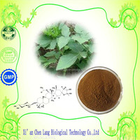 The Factory Direct Sale Black Cohosh Extract With High Quality