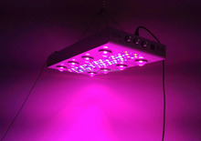 High power grow tent complete kit 800w led grow lights with low price