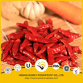 Red color 2 years shelf life red chilli pods