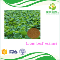 Plant extract Lotus leaf Extract 98%Nuciferine and lotus flavone