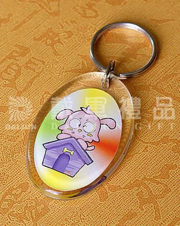 Custom Promotion Photo Keyrings Acrylic or PS Oval Shape
