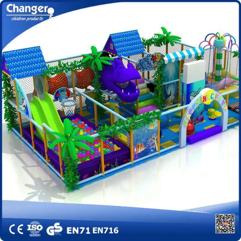 Interesting Modern Realistic Cheap Wholesale Good Guality Provided OEM Indoor Play Ground,indoor play ground