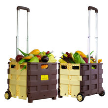 Airport Wheel Luggage Beach Garden Vegetable Kid Elderly Mini Push Hand foldable Trolley Shopping Cart
