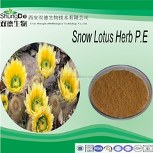 Free sample Snowdrop extract powder/Adonis Flower extract /lanatechead saussurea P.E