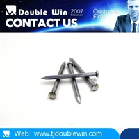 Competitive price electro galvanized steel twist concrete nails
