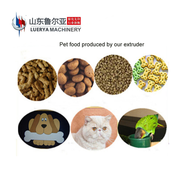 New Brand 2017 chew pet food extruder 2ton wet hot sale on line