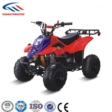 racing 110cc automatic ATV quad with EPA,CE for youth