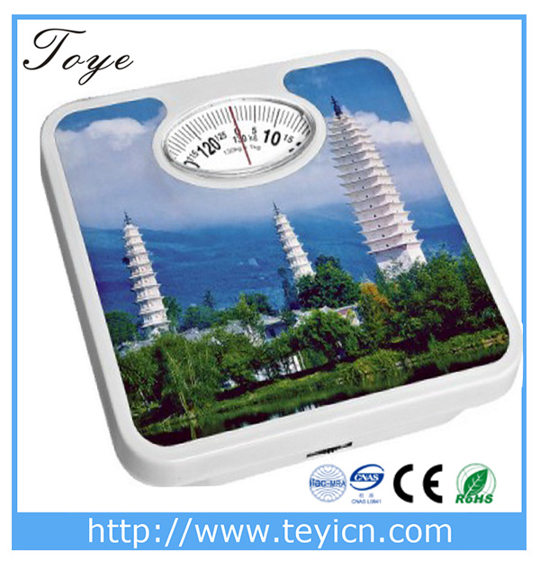 TOYE machanical weighing scale part weight balance