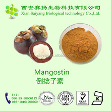 Mangosteen p.e.powder in a bulk