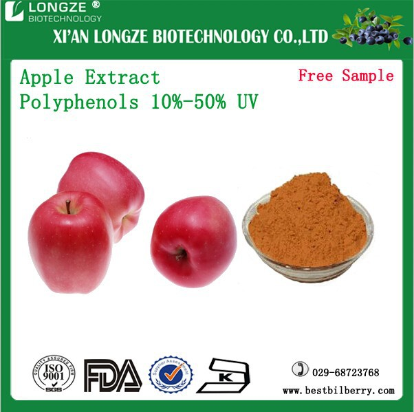 Natural Apple Fruit Extract Powder Apple Extract Powder Bulk Apple Peel Powder Extract