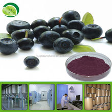 Organic Raw Materials Acai Berry Juice Powder - 100% water soluble