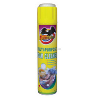 PE Auto Care Multifunction Foam Cleaner