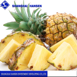 Fresh pineapple import agency china trade agent import fruit