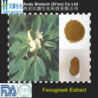 High Quality Common Fenugreek Seed Extract 10:1