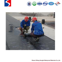 SBS modified bitumen Waterproof Membrane Type roofing material