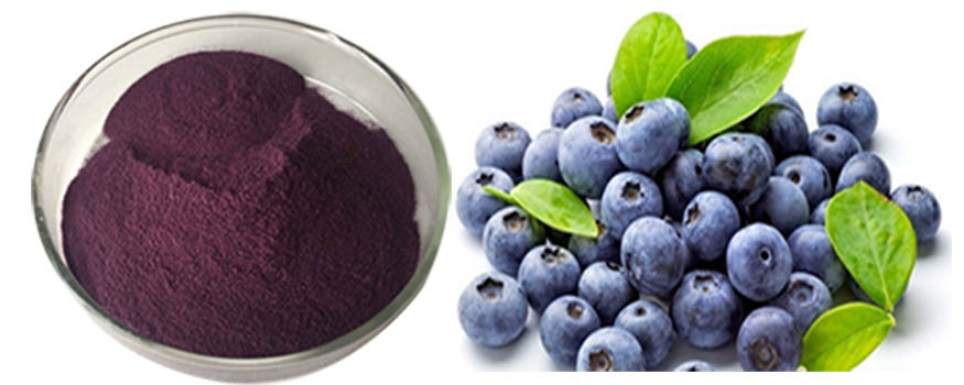 Wholesale Best Quality Freeze Dry Acai Berry Powder