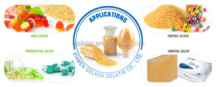 Food grade bovine skin halal gelatin powder/edible gums