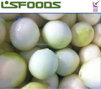 2014 Fresh whole peeled onion