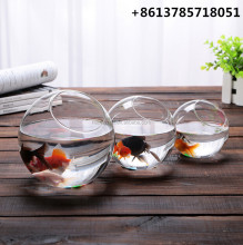 custom design mini aquarium tank fish for sale direct from factory