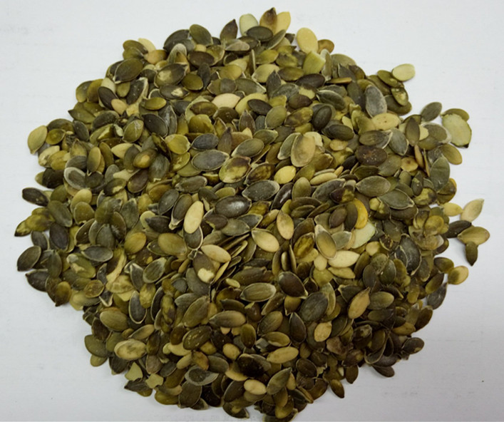 Chinese Factory Pumpkin Seeds GWS Grade A (Competitive Price )
